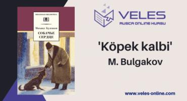 Rusça-kitap